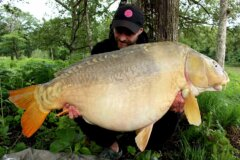 Camalo carp fishing big carp8 01 39 2