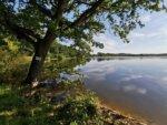 Lake La Loubiere carp fishing france 6