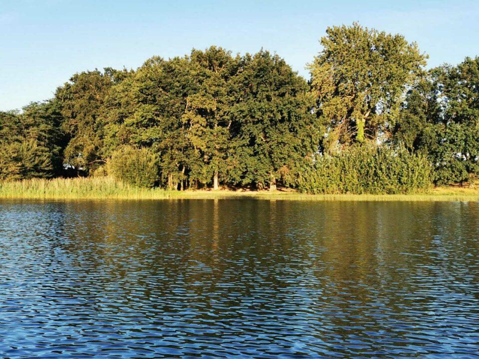 Lake La Loubiere carp fishing france 27