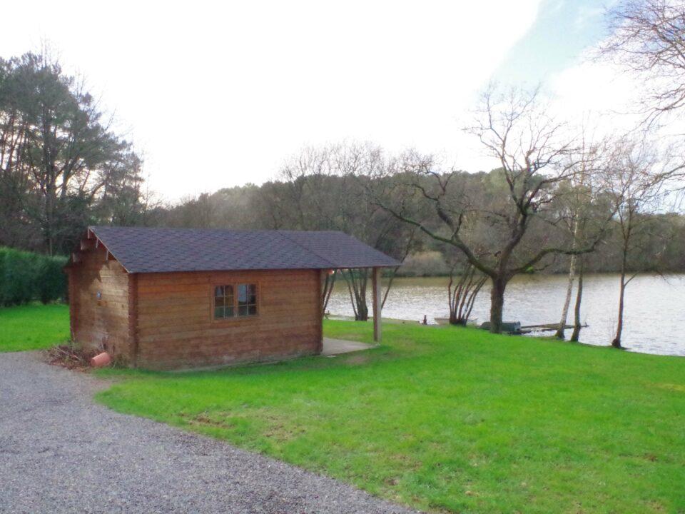 12 swim 1 cabin