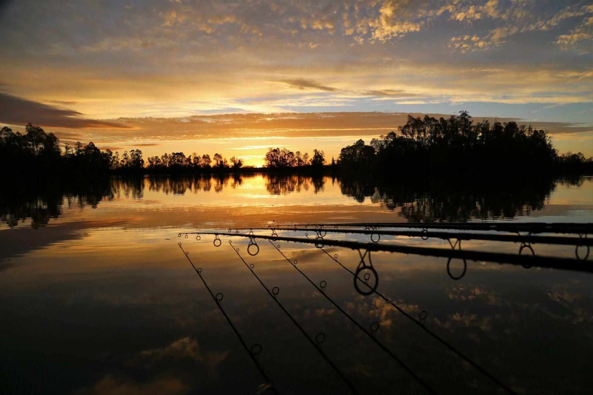 Robin Lake Goncourt 5cc81a9a