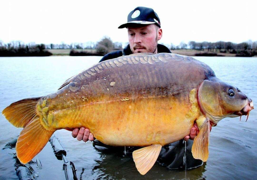 Guillaume with a nice Villedon mirror