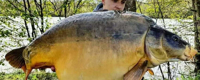 Etang Carpanium pêche carpe Paris