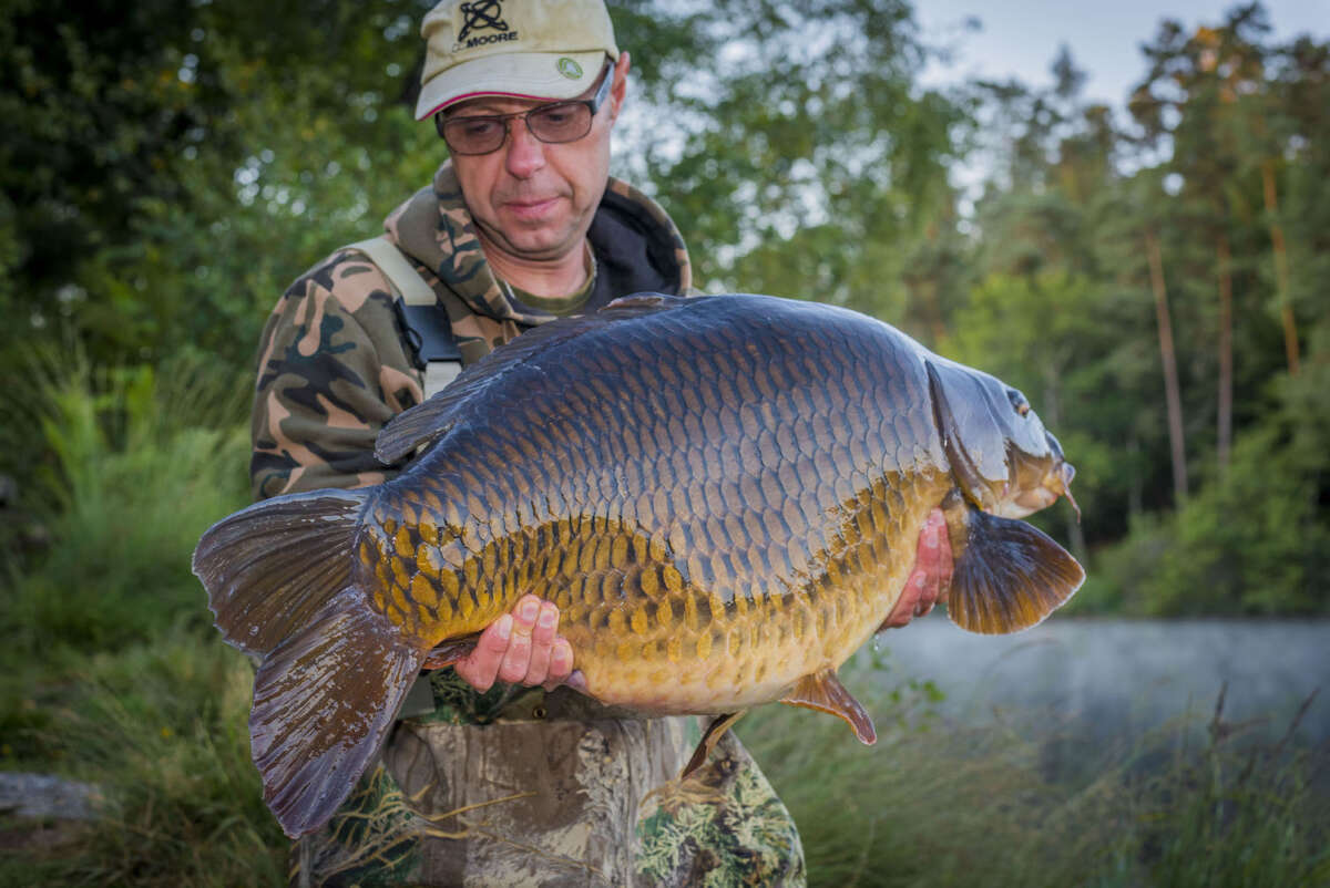 Ruffaud20carp20fishing20lake20france202019 5dc2b400
